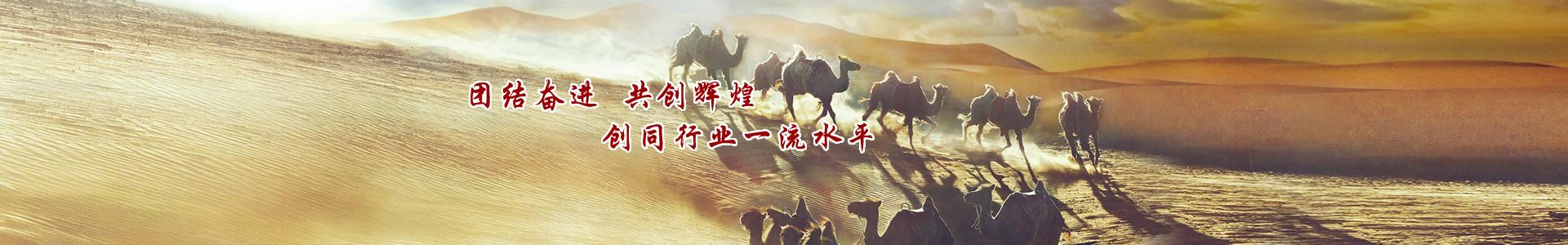 团结奋进,共创辉煌 创同行业一流shui平
